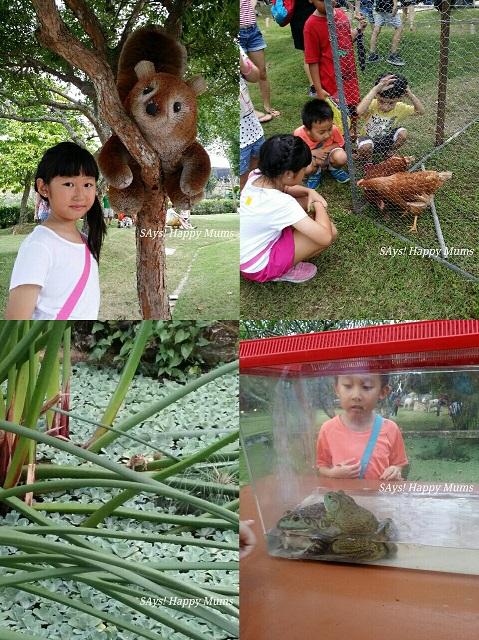 Singapore Farm Fest 2015