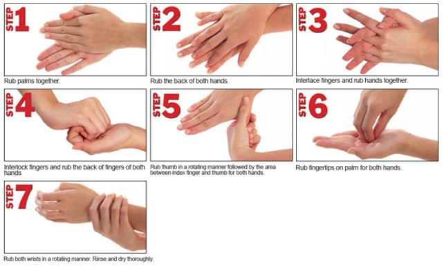 The 7-Step Handwashing Technique