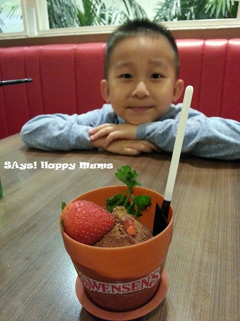 Swensen's Milo Ice Cream Dirt Pot
