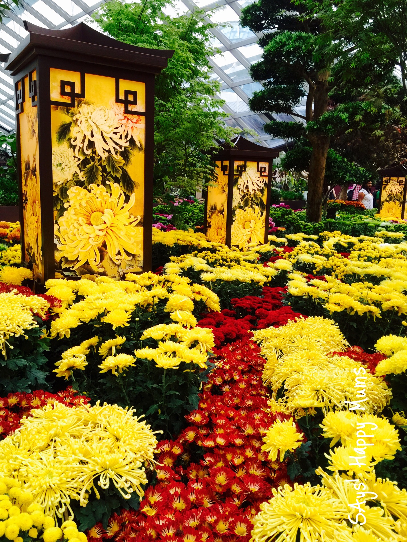 Garden By The Bay Flower Show gardensthe bay | says! happy mums